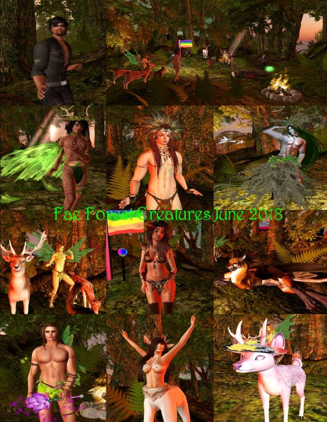 FAE FOREST CREATURES COLLAGE JUNE 2018