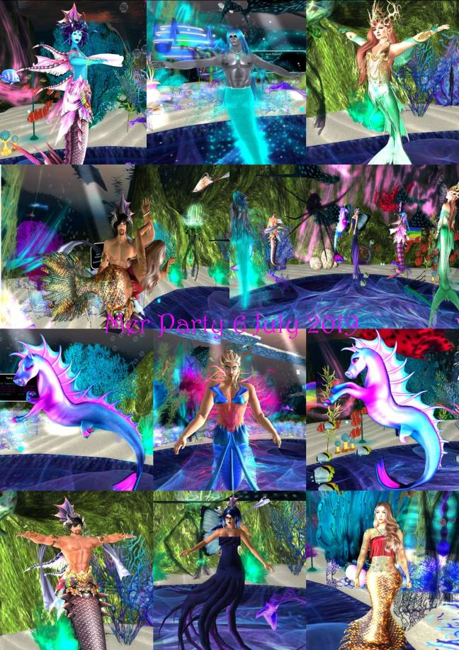 MER PARTY 7 JULY 2019