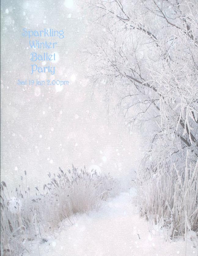 sparkling winter ballet poster sat 19 jan 2.00pm
