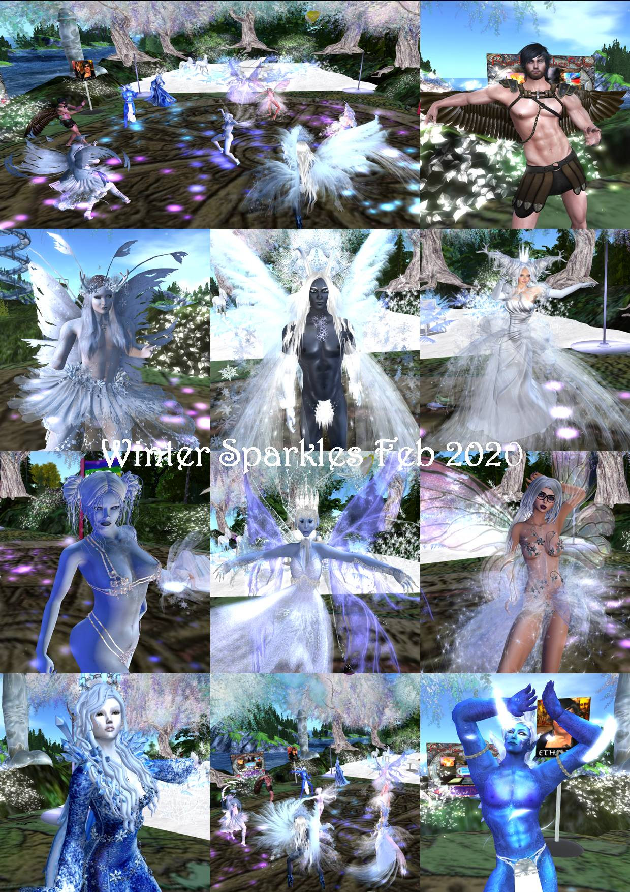 WINTER SPARKLES PARTY COLLAGE FEB 2020