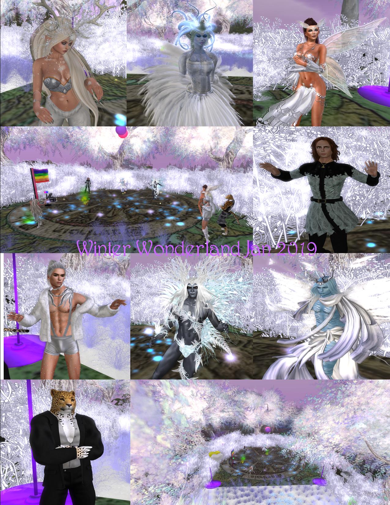 winter wonderland collage jan 2019